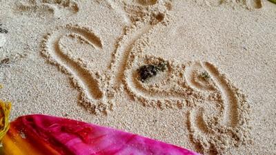 Sur les traces de Socrate à Bali en Indonésie... Végétarisme
