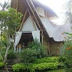 Galerie Bali Green village