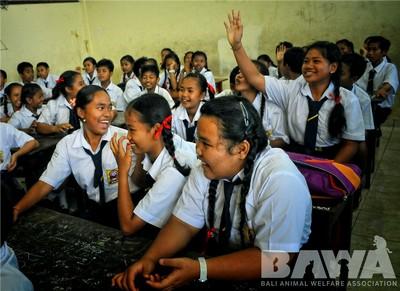 Protection des animaux à Bali : BAWA, la cour des miracles. Education