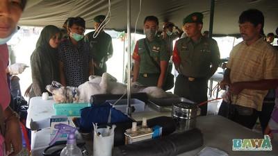 Protection des animaux à Bali : BAWA, la cour des miracles. Les autorités
