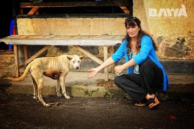Janice, une grosse dose d'héroïne pour les animaux de Bali. Janice et un chien malade