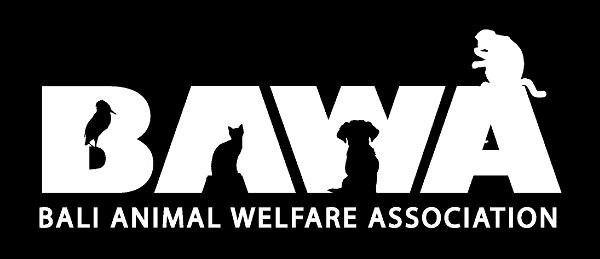 Protection des animaux à Bali : BAWA, la cour des miracles. Logo bawa