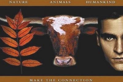 Torture et barbarie à Pampelune : corrida basta! Earthlings Faire la connection