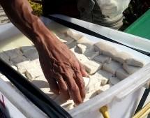A Bali, Hervé Berbille, spécialiste, passionné, parle du soja