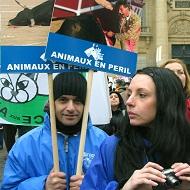 AVA Nos voix pour les animaux