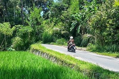 Bali autrement : Yayasan, association pour les enfants. Trouver son chemin bali