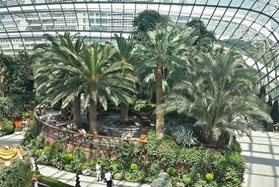 Dernier jour à Singapour : de découvertes en amitié. Flower dome