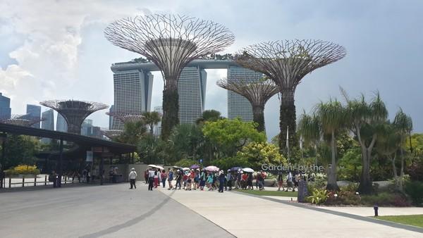 Dernier jour à Singapour : de découvertes en amitié. Gardens by the bay