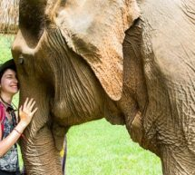 En Thaïlande Christine nous présente Chiang Mai petit paradis végétarien