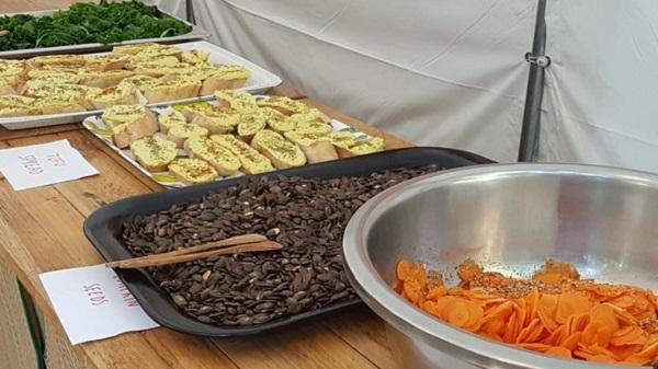 Vegan Surf Camp holidays dans les Landes : le bon plan. Le buffet