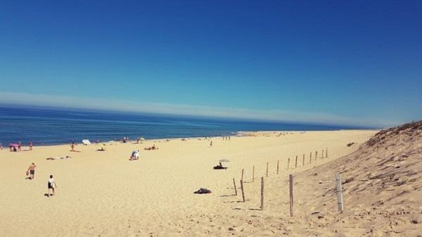 Vegan Surf Camp holidays dans les Landes : le bon plan. Plage à Moliets