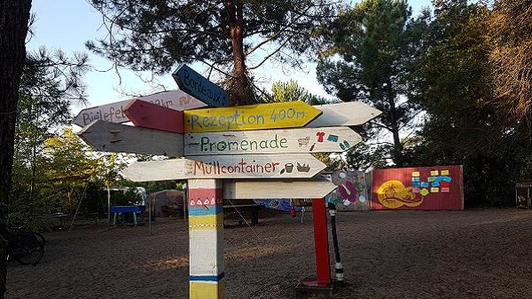 Vegan Surf Camp holidays dans les Landes : le bon plan. La bonne direction