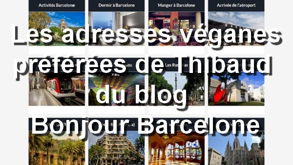 Les adresses véganes préférées de Thibaud du blog Bonjour Barcelone. Instagram