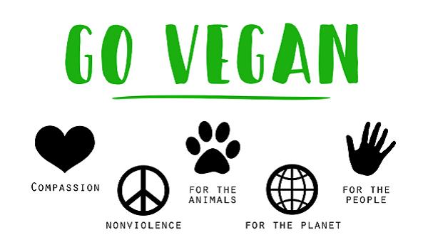 C'est quoi le véganisme? Guide pour un mode de vie, par Véronique Perrot. Go vegan