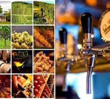 Vins et bières vegan, définition, label, comment s'y retrouver?