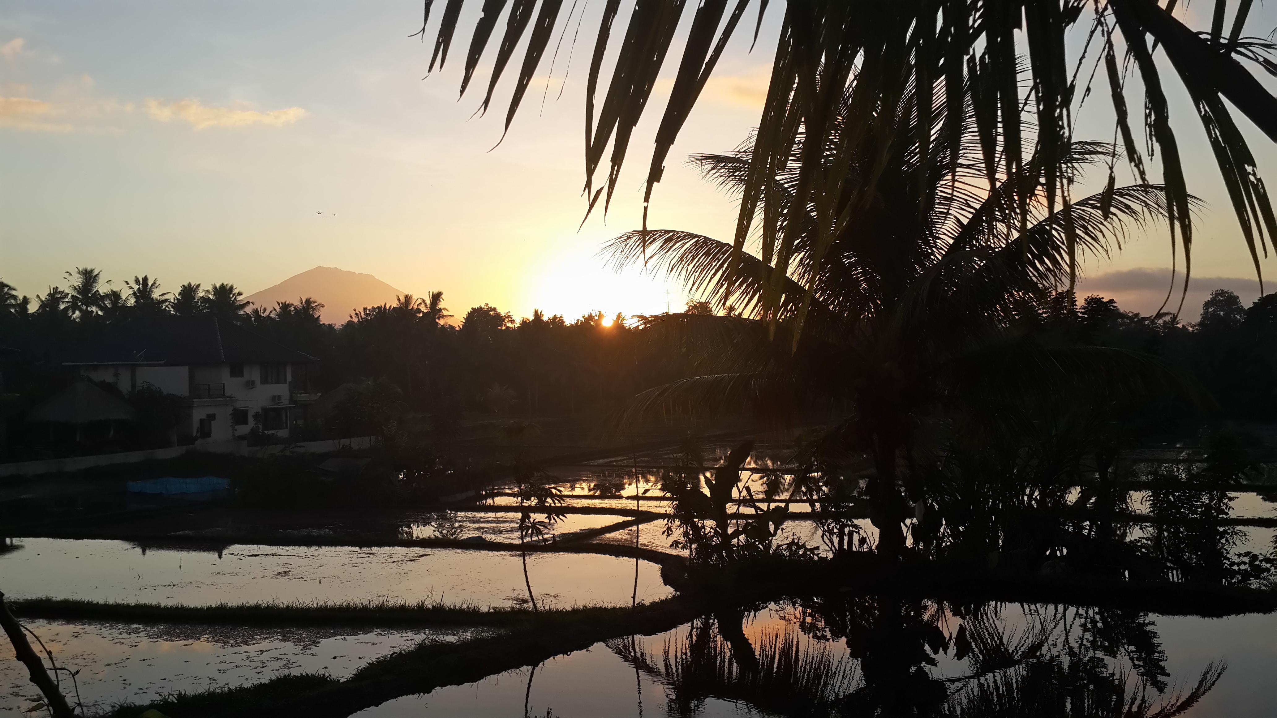 sunsets_(14).jpg
